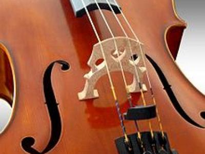 Independent Level 1 Violoncello Teacher Training Course DENMARK