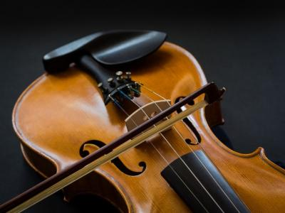 Independent Level 4 Violin Teacher Training Course NETHERLANDS